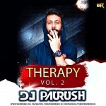 Therapy Vol.2 - DJ Paurush