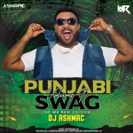 Punjabi Swag Vol.9 (The We Desi Edition) - DJ Ashmac