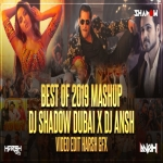 Best of 2019 Mega Mashup - DJ Shadow Dubai x DJ Ansh