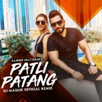 Patli Patang ( Official Remix ) - DJ Maulik l Rajdeep Chatterjee