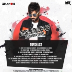 Best of 2019 Mega Mashup - DJ Shadow Dubai & DJ Ansh