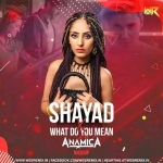 Shayad X What Do You Mean (Mashup) - DJ Anamica