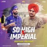 So High X Imperial (DJ Ravish  DJ Chico Festival Mashup)