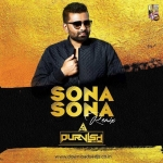 SONA SONA - (DESI TADKA MIX) DJ PURVISH