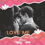 Love Me Like You Do (Remix) Dj Rohit Sharma X Jaggy