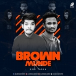 Brown Munde (Desi Tadka) - DJ Ayush Bhanu  DJ SP